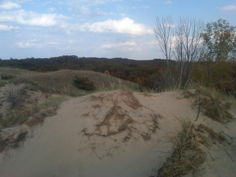 The Dunes State Park